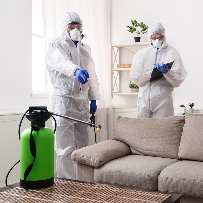 covid cleaning services toronto